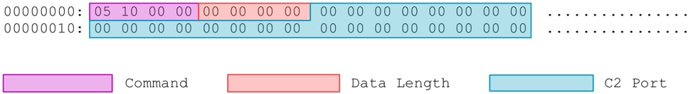 図6 – リモートC2へのDDKONGビーコン